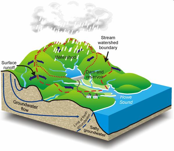 Ch 910 Fresh Water – Watershed Worksheet